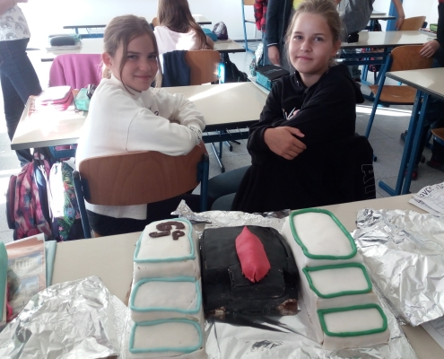 model školy z dortu