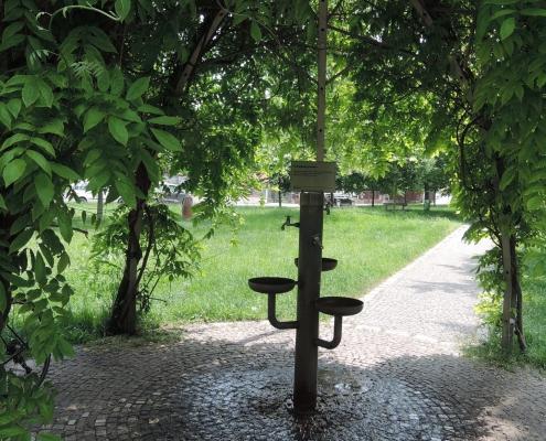 Kolem Svatojánského pramene je kruhová dražba