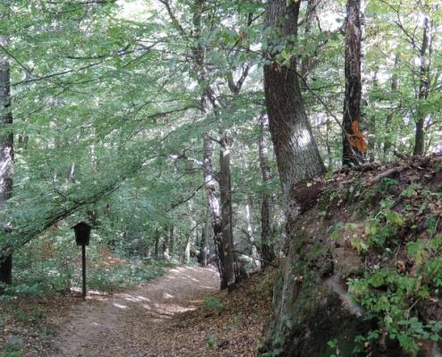 Start červené trasy se shodoval s cestou k jeskyni Obraznice