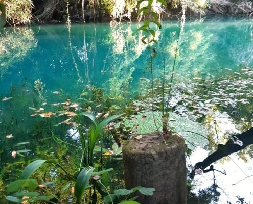Záhadná Timavo River, která se na velký kus své délky vytratí pod zem.